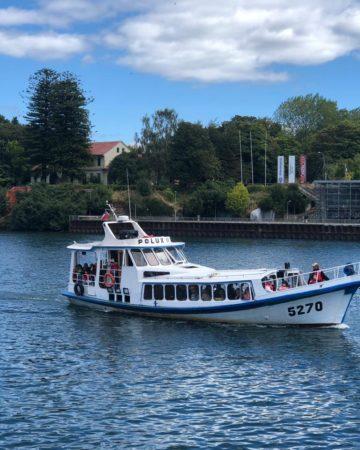 Navega y Conoce Valdivia